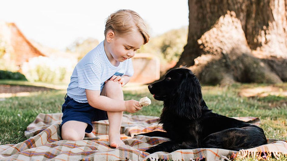 Happy Birthday Prince George! The Cutest Moments From Our Future King of England