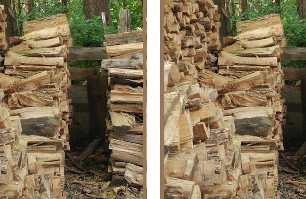 Das Netz verzweifelt an diesem Suchbild: Findest DU die Katze im Holzstapel?