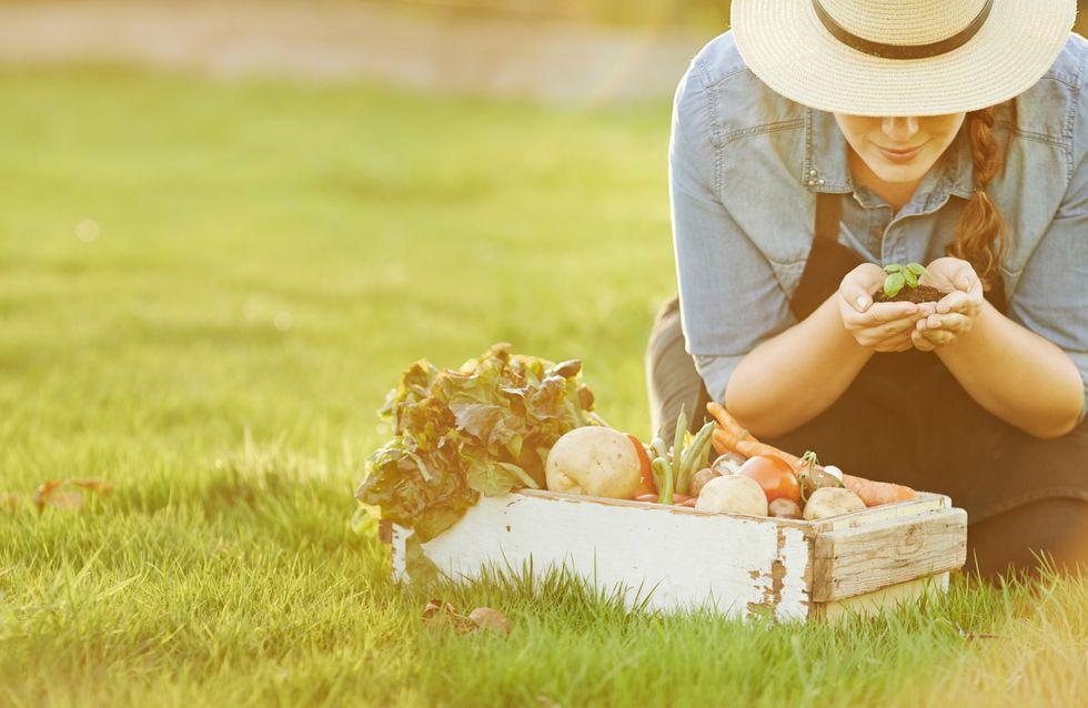 Mãos à horta: em casa ou no apartamento, a melhor maneira de cultivar vegetais pertinho de você