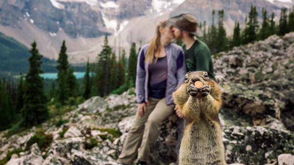 Tierisches Photobomb: Dieses Paar hat bei seinem Verlobungsfoto unerwarteten Besuch