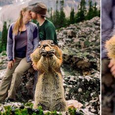 Photobomb: esquilo invade ensaio fotográfico de casamento