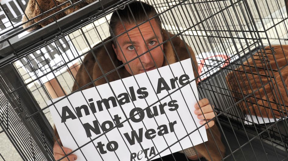 Bonne nouvelle : The Kooples renonce à la fourrure animale