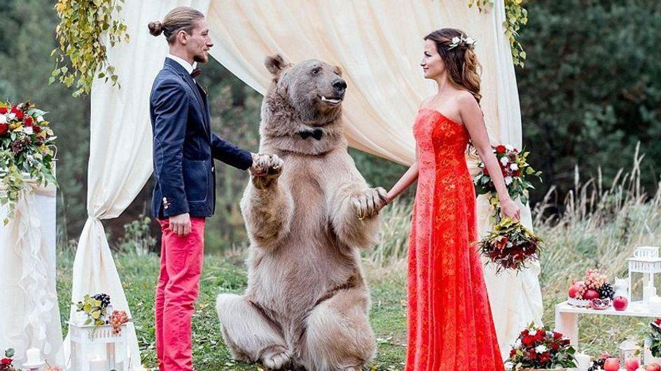 Auf dieser Hochzeit tanzt der Bär - also wirklich jetzt...