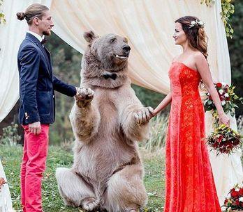 ¡Inexplicable! Un oso es testigo de una boda