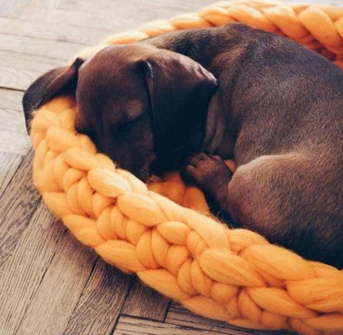 Stricken lernen: Oversize Hundekörbchen