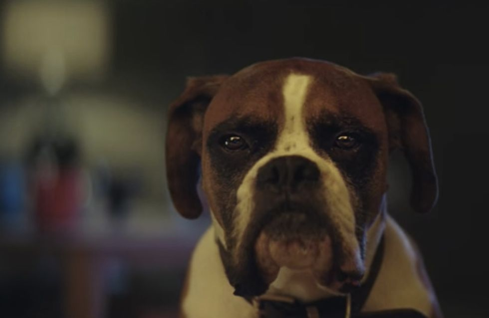 WATCH: The John Lewis Christmas Ad Is Here, Which Means It's Finally Christmas