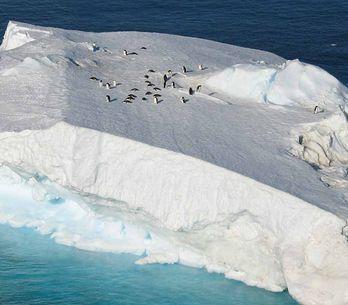 ¡Sorprendente! Existe un hotel de lujo en la Antártida?