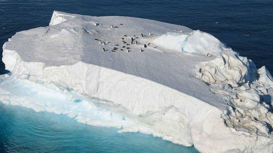 ¡Sorprendente! Existe un hotel de lujo en la Antártida
