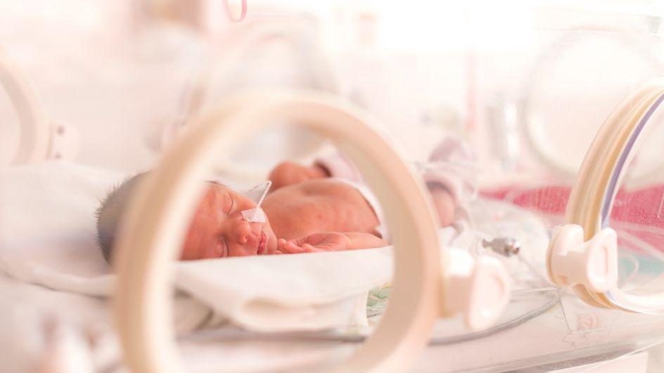 Nel 1997 partorì 7 gemelli: eccoli il giorno del loro 19esimo compleanno