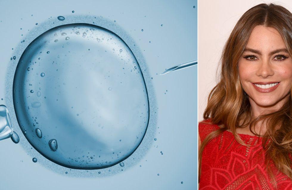 Wir wollen leben! Schauspielerin Sofia Vergara wird von ihren eigenen Eizellen verklagt