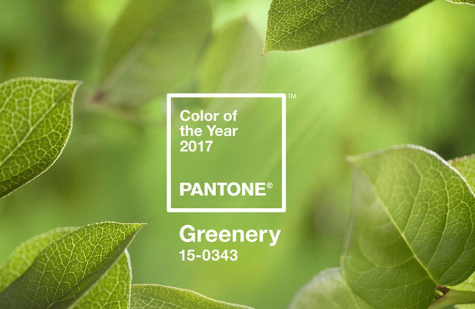 On se laisse inspirer par Greenery, la couleur Pantone de l'année 2017