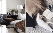 Trend Cocooning: Wie du dein Zuhause endlich so richtig gemütlich machst