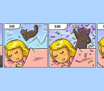 20 Cómics que reflejan cómo cambia nuestra vida al tener un gato