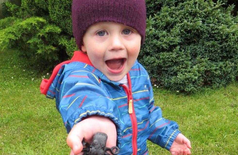 Partis chercher des coquillages, ils tombent sur un trésor inattendu (photos)