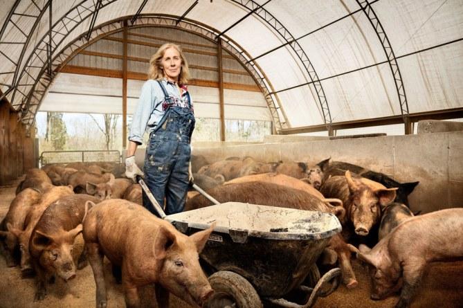 Nancy Poli - Schweinebauerin