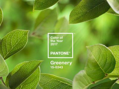 Greenery ist die Farbe des Jahres 2017