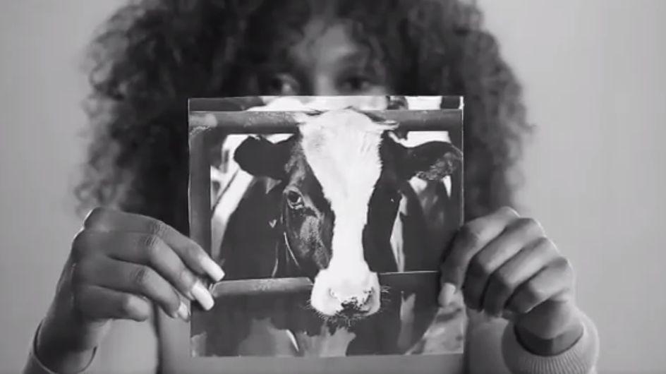 Comparer l'insémination des vaches à des femmes violées ... la nouvelle campagne choc de la PETA (Vidéo)