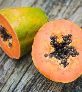 Papaya fermentata: benefici e controindicazioni che devi conoscere