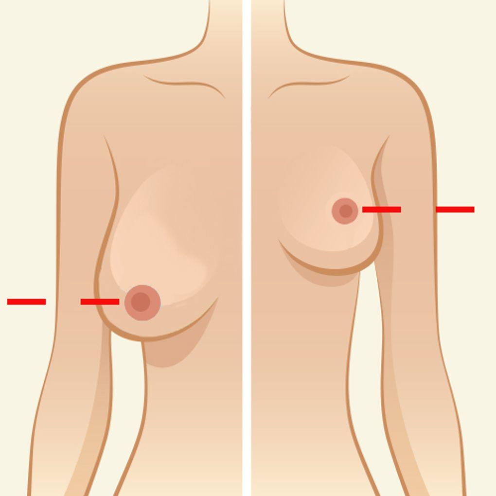 Brüste schöne runde Natürliche