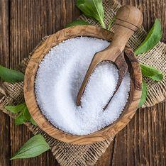 Stevia: proprietà e controindicazioni del dolcificante a zero calorie