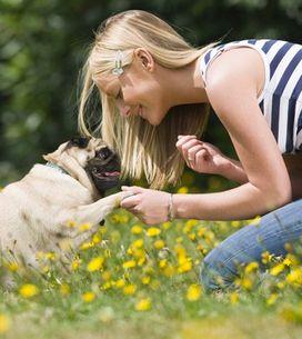 10 motivi per cui (forse) prendere un cane non fa al caso tuo