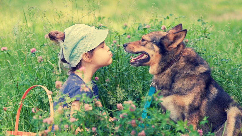 10 razones por las que tu hijo debería crecer con una mascota