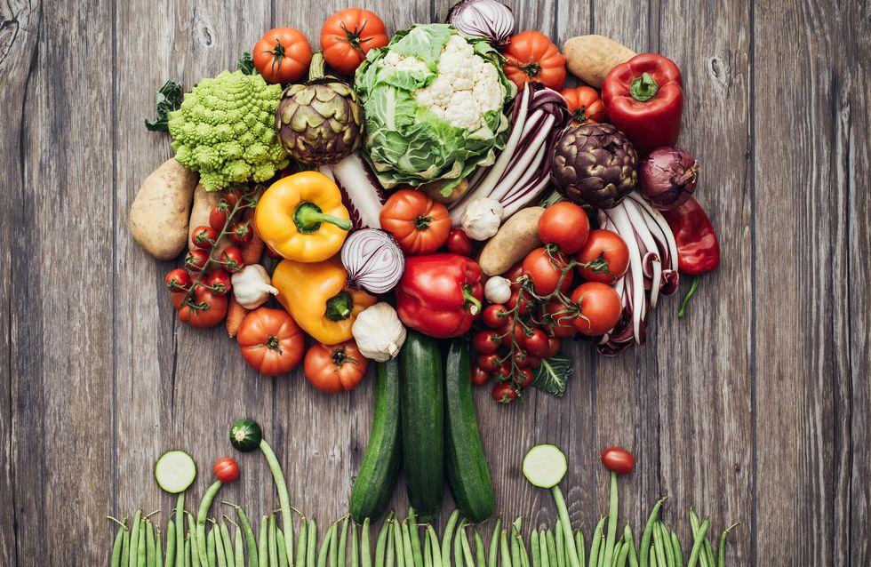 Dieta vegana: todo lo que debes saber