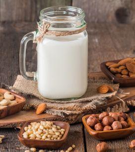 Cuisinez sans lactose avec du lait végétal !