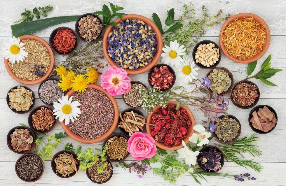 12 plantes qui font tellement de bien quand on se coince quelque chose !