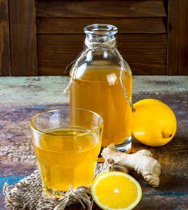 Comment faire sa kombucha maison, la boisson santé pétillante ?