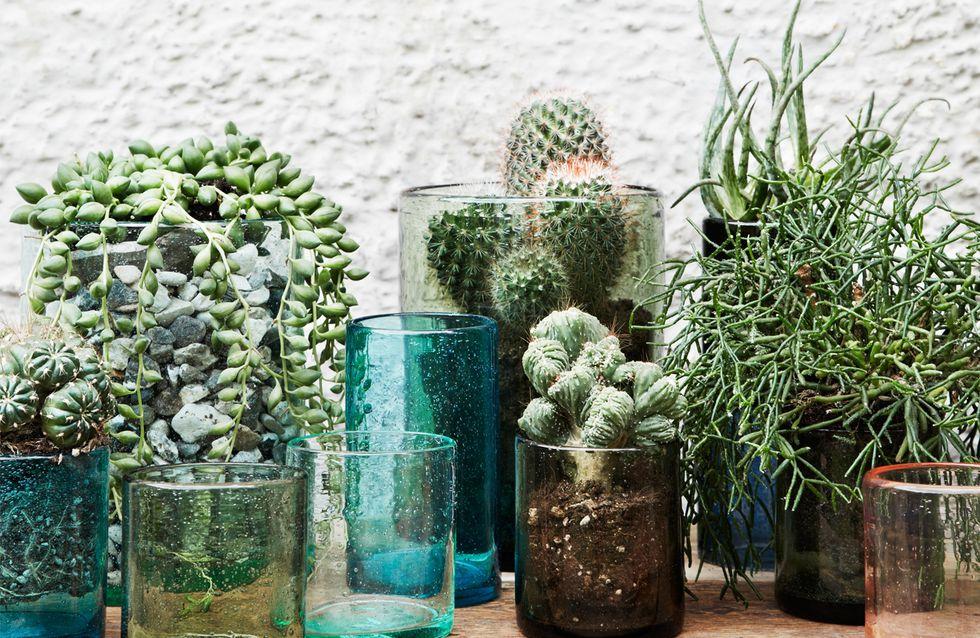 DIY-Deko: 5 geniale Ideen für selbstgemachte Pflanzgefäße