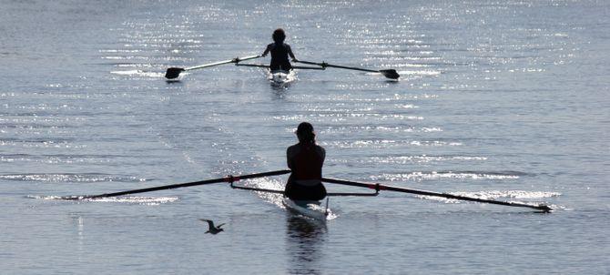 L'aviron, un super sport pour se muscler tout le corps et donc aussi les bras bien sûr !