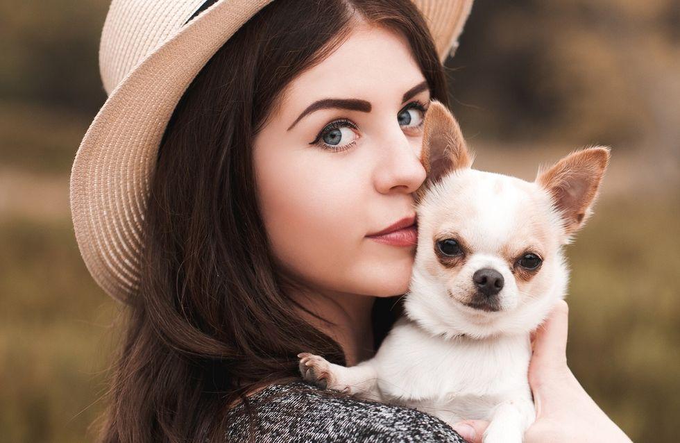 Il cane perfetto per ogni segno zodiacale