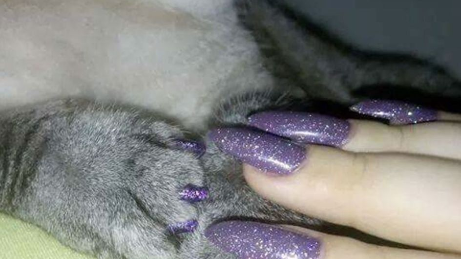 Paws Up! You Can Now Get Matching Manicures With Your Pets