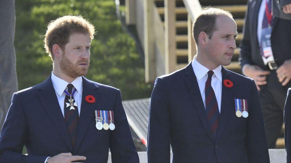 Pour la première fois, les princes William et Harry évoquent leur mère ensemble (vidéo)