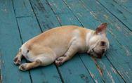 Sono sempre stanca: le 10 abitudini che ti tolgono l' energia