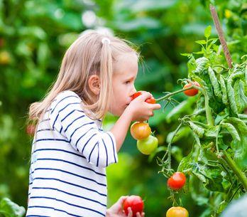 Comment bien débuter le jardinage avec un enfant ?