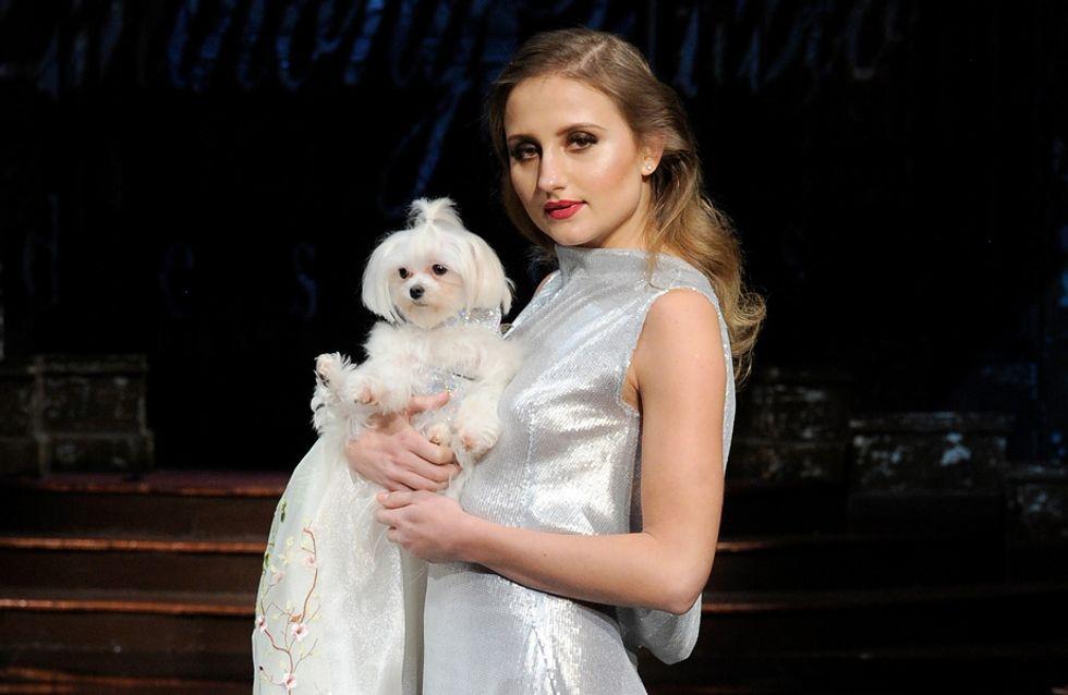 Desfile perruno en la New York Fashion Week: ¡mira qué monadas!
