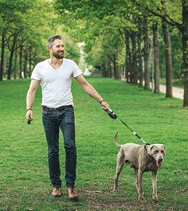 Tale cane, tale padrone: come capire la sua personalità dal suo cane