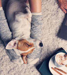 Come passare il tempo in casa: 8 idee per le serate più fredde