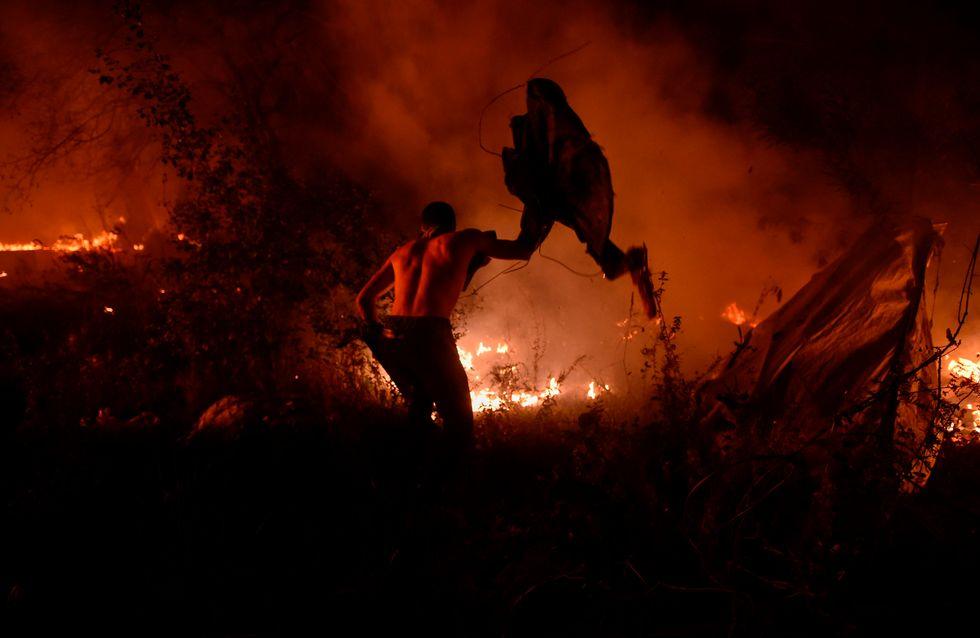 ¡Forza Galiza! El paraíso arde en un fin de semana trágico