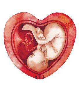 Mangiare la placenta: pro e contro di questa strana pratica