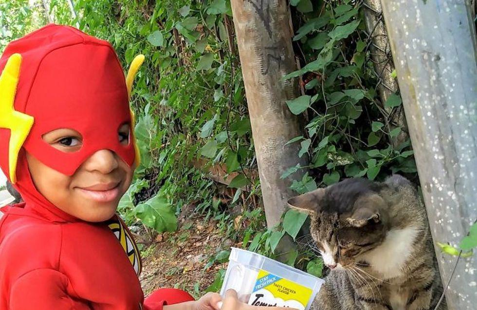 Este niño se viste de superhéroe y salva a los gatos callejeros