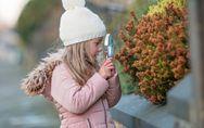 Montessori,  Waldorf-Steiner, Freinet ... : Ce qu'il faut savoir sur les écoles