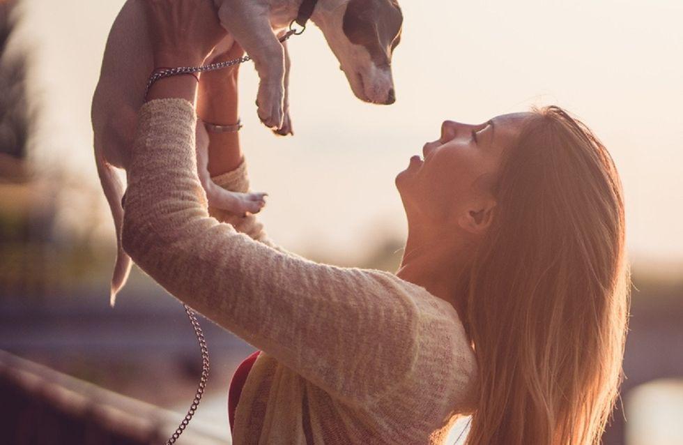 Come scegliere il cane giusto in base al tuo carattere
