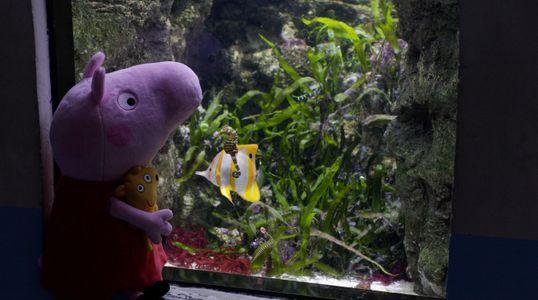 Peppa Pig à l'aquarium de Paris