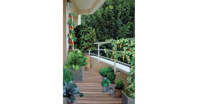 Comment Amenager Mon Balcon 4 Idees Deco Pour Vous Inspirer