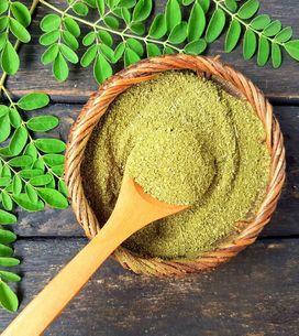 Moringa oleifera: proprietà e benefici di questo super-food!