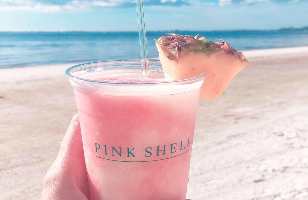 Floridas Westküste: Insider-Tipps für die schönsten Strände, Ausflüge und Hotels