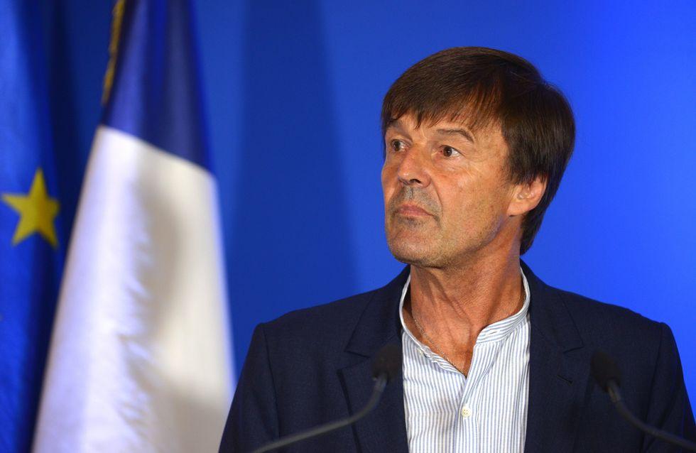 On fait le point sur Nicolas Hulot, mêlé à des affaires de violences sexuelles